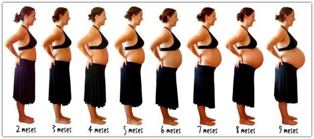 ideias registar crescimento barriga gravida 8